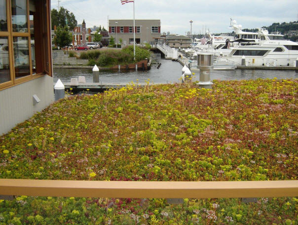 2012.6.28 Lake Union Floating Home (1)