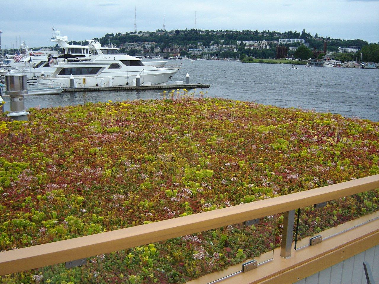 2012.6.28 Lake Union Floating Home (2)