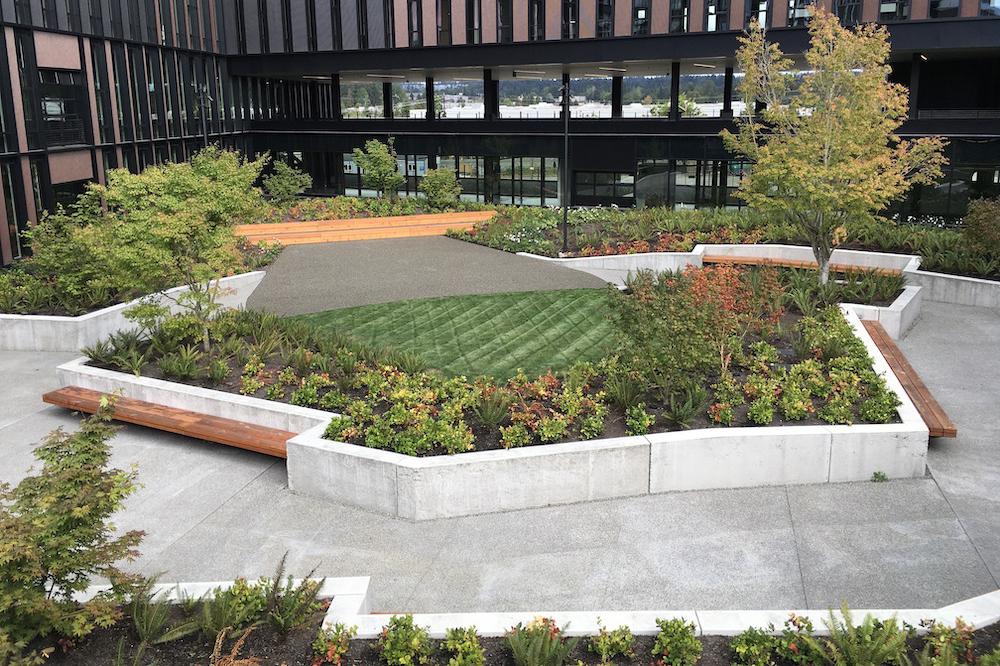 REI landscaping image